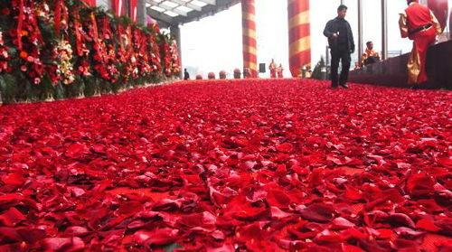 大连一酒店 20万朵玫瑰花瓣铺成玫瑰道