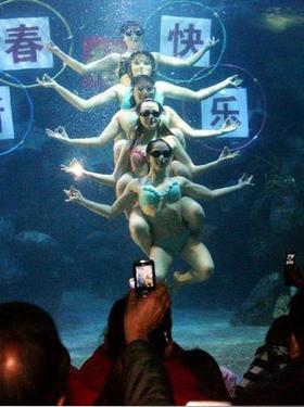 2009年1月27日,在福州左海海底世界,俄罗斯水上花样芭蕾表演队的5位