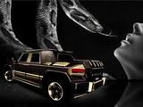"""瞄准中国富豪 DARTZ将推""""黑蛇""""豪华SUV"""