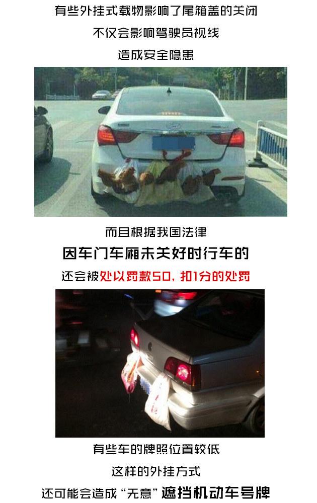图说八道 公鸡你坐车兜风就不怕警察抓?