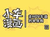 """小车漫画第7期之""""走HOV车道的单身狗"""""""