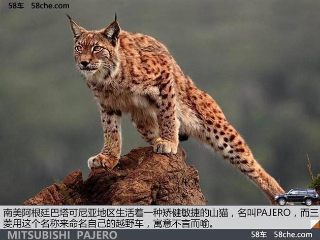 """依旧敏捷的""""山猫"""" 三菱帕杰罗高原体验"""