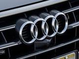 豪车销量奥迪再夺冠 今年国产新能源车