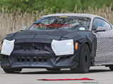 新Mustang Shelby GT500谍照或明年亮相