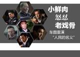 """鲜肉怒怼戏骨 车圈重演""""人民的名义"""""""