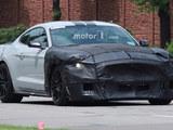 全新Mustang Shelby GT500路试谍照亮相