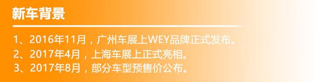 WEY VV5s正式上市 售价XX.XX-XX.XX万元