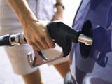 油价调整窗口将9月29日开启 或继续上涨