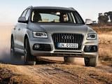 Q5仍是冠军 2017豪华品牌国产SUV销量榜