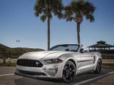 Mustang加州特别版官图 或2019年开售