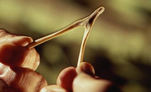 操控性最出色 双叉臂独立悬挂技术解析
