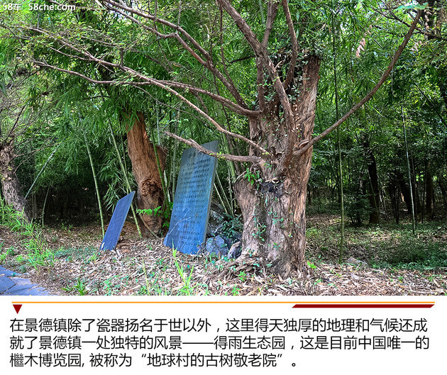 檵木探源/陶瓷制作 与斯巴鲁走进景德镇