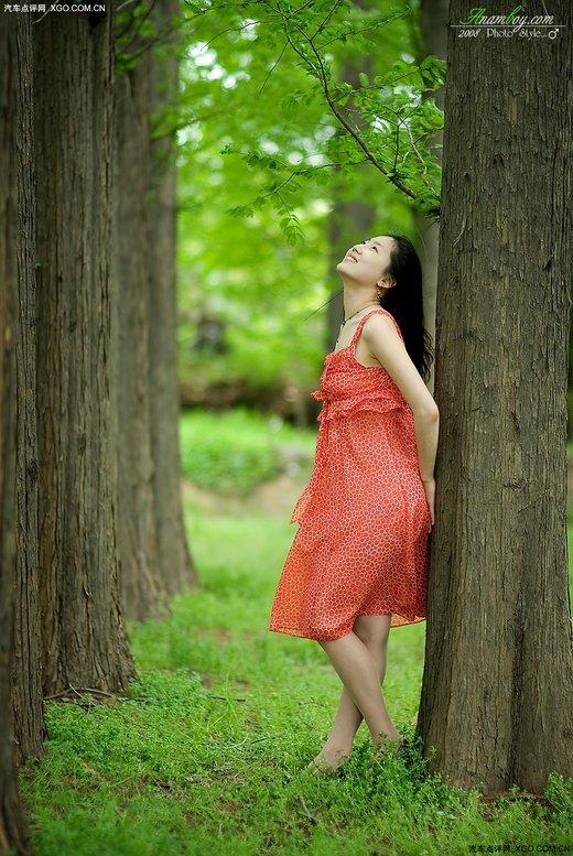 丛林美女丛林 精灵森林美女  竖