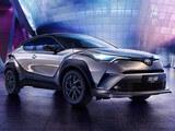2021款奕泽IZOA正式上市 售价16.48万元