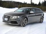 雪地速降 加拿大冰雪试驾全新奥迪RS3